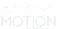 Motion_weblogo_palegrey_stacked.png