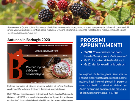 Newsletter di Ottobre 2020