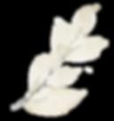 watercolorgraphicvol2_clipart7_ohsnap_ed