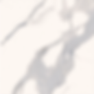 Screen Shot 2020-03-16 at 9.58.03 PM.png