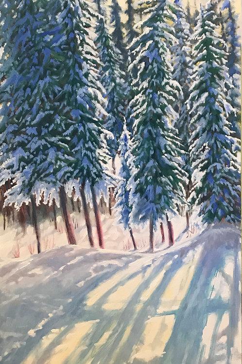 The Quiet of Snow