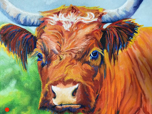 Mary Ann's Cow
