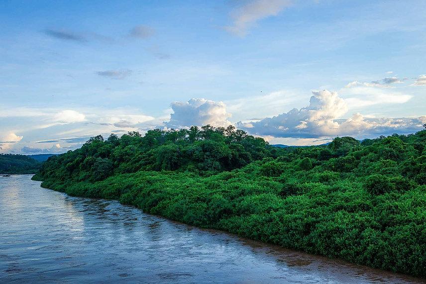 kariba-river-forest-web-scaled.jpeg