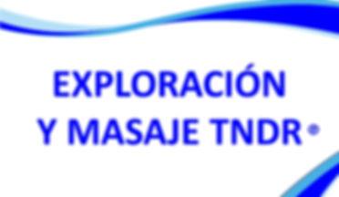 Exploración y Masaje TNDR.JPG