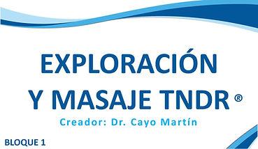Bloque I Técnico Naturópata en TNDR, Exploración y Masaje TNDR