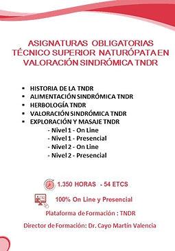 2020 edwic asignaturas naturopatia  VALO