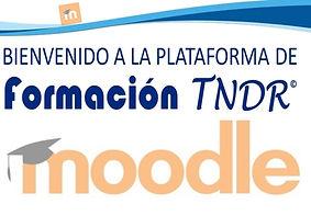 moodle-plataforma.jpg
