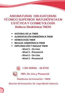 2020 edwic asignaturas tecnico tndr TECN