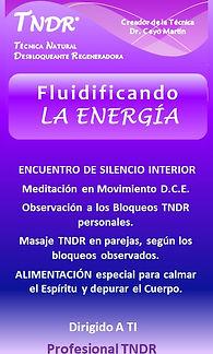 Fluidificando la Energía TNDR