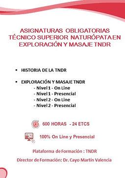 2020 edwic asignaturas naturopatia TECNI