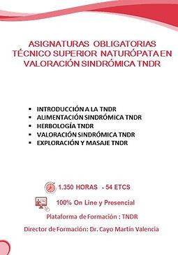 2020 edwic asignaturas naturopatia valor