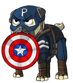 Captain Ameripug