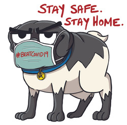 Stay Safe. Stay Home.