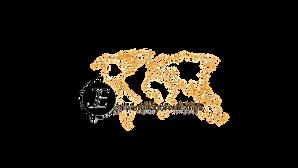 jem logo.png