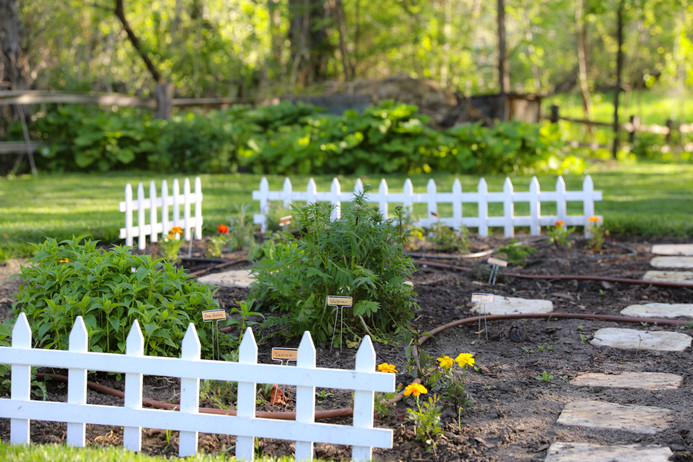 med garden.jpg