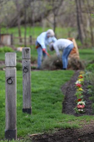 Clean up day, garden.jpg