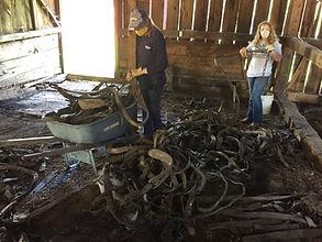 Horse Barn Clean Up Interior.jpg