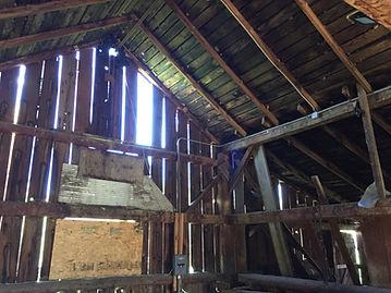 Horse Barn Clean Up, Spring 2020.jpg