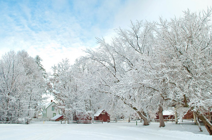 Farmstead in Winter (Carina DeWitt 2012)