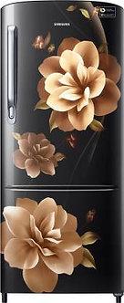 Samsung 192 L (RR20R172ZCB/HL)