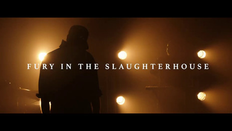 Fury in the slaughterhouse - Time to wonder
