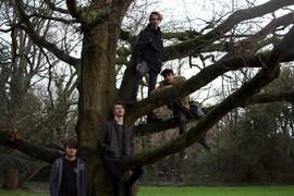 Tree lads