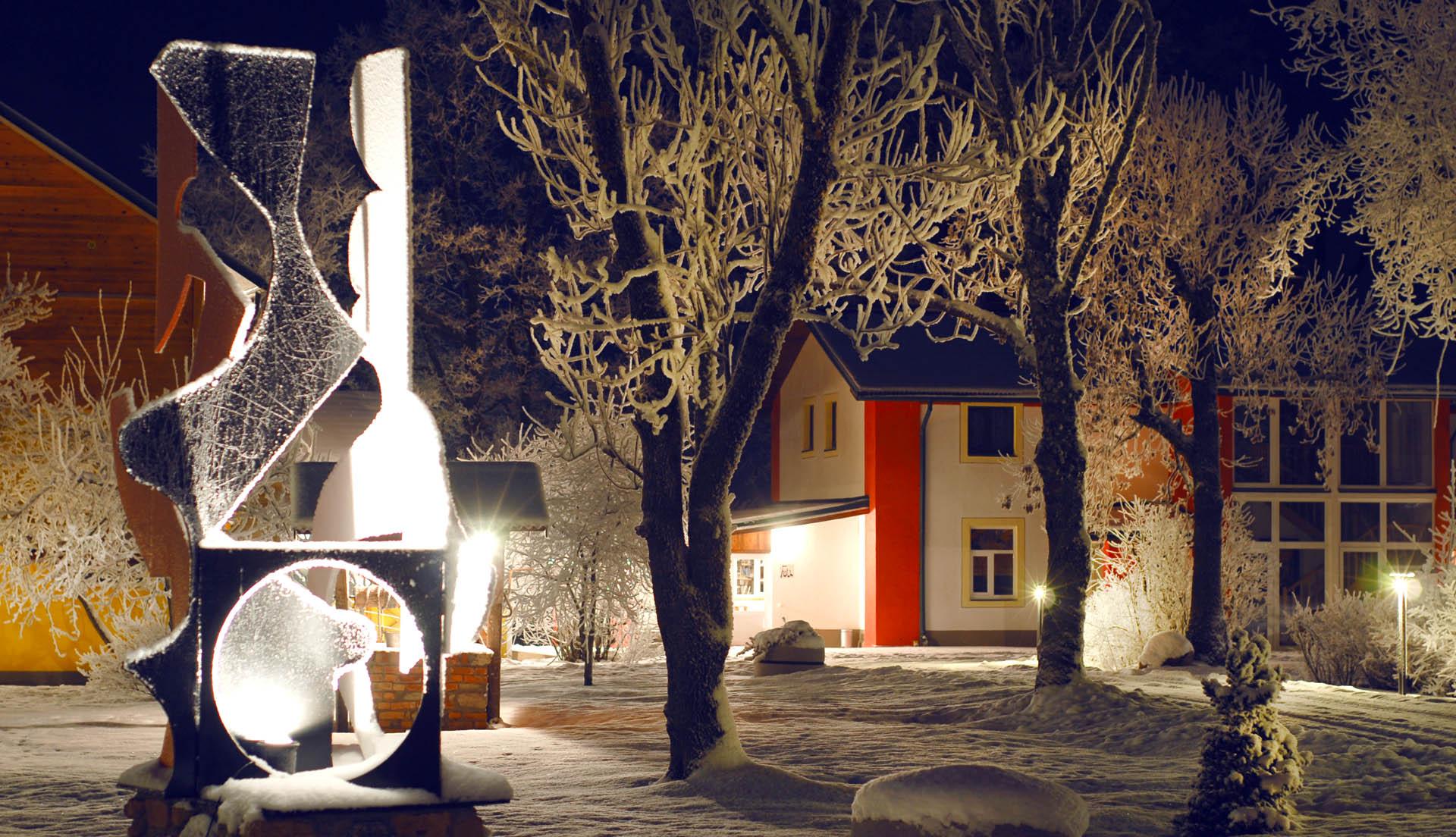 lizari winter 1
