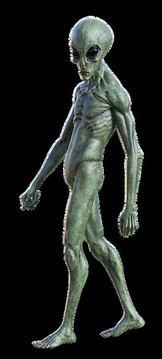 alien png standing.png