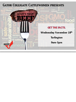 GCCW What's You Beef Flier Design 1