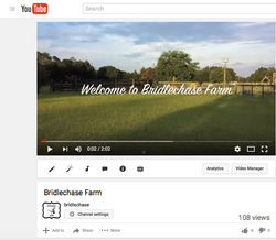 Welcome to Bridlechase Farm