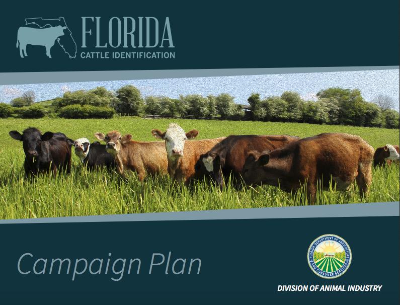 Florida Cattle Identification