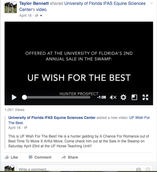UF Wish For The Best