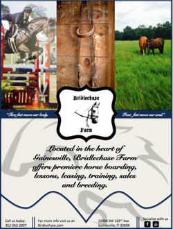Bridlechase Farm Flier