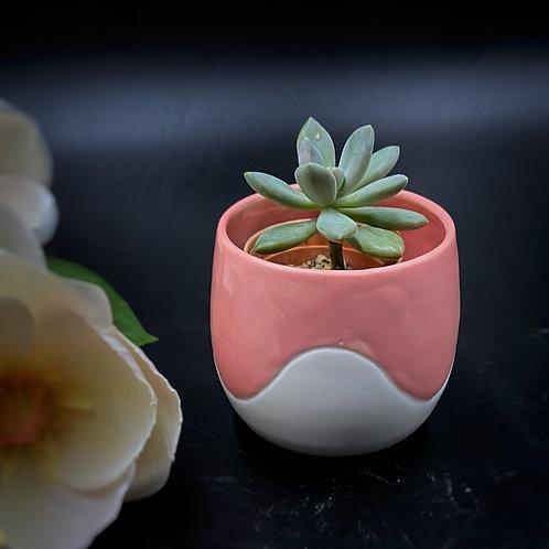 Gris Gris - Wave Planter - Pink