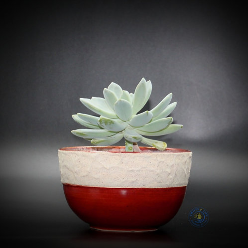 Planter - Deep Red & Cream