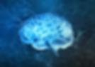neurology training.webp