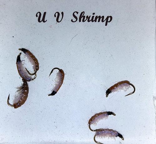 UV Shrimp
