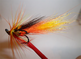 Cascade-Salmon Fly