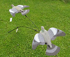 Decoys & Decoying Accessories, Vermin control, Wild fowling,