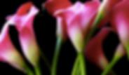 Снимок экрана 2020-04-02 в 13.02.37.png