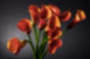 Снимок экрана 2020-03-18 в 16.11.50.png