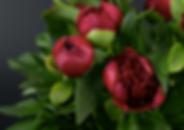 Снимок экрана 2020-04-02 в 12.00.36.png