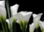 Снимок экрана 2020-05-16 в 21.25.45.png