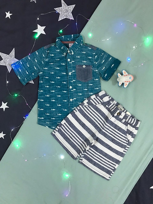 boys shark set