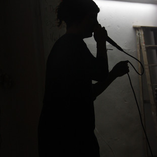 Argia Werner executing a voice and lecture performance.