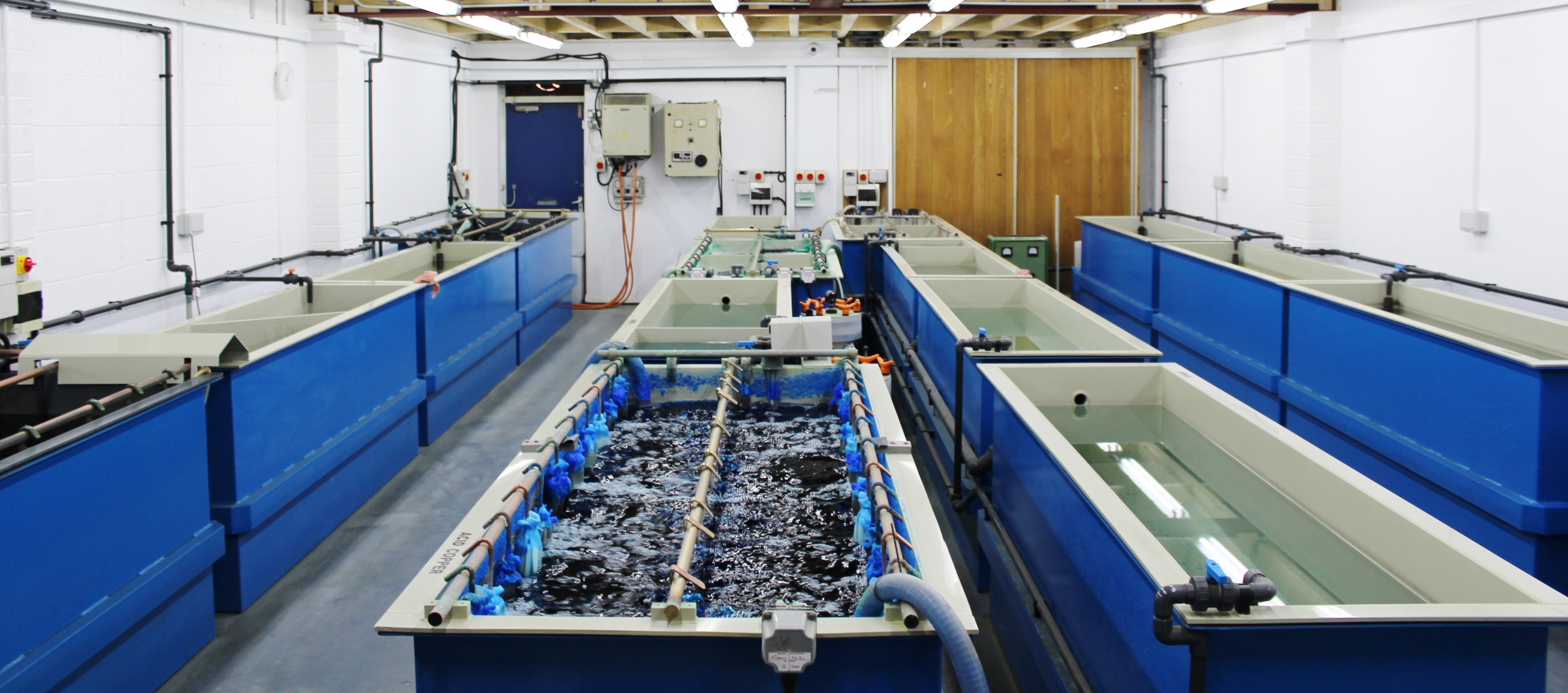 Electroplating services Birmingham