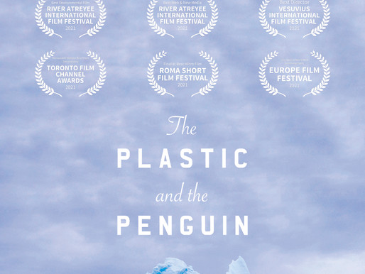 The Plastic and the Penguin - Short Film Review