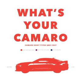 Camero-Info-Graphic4_edited.jpg