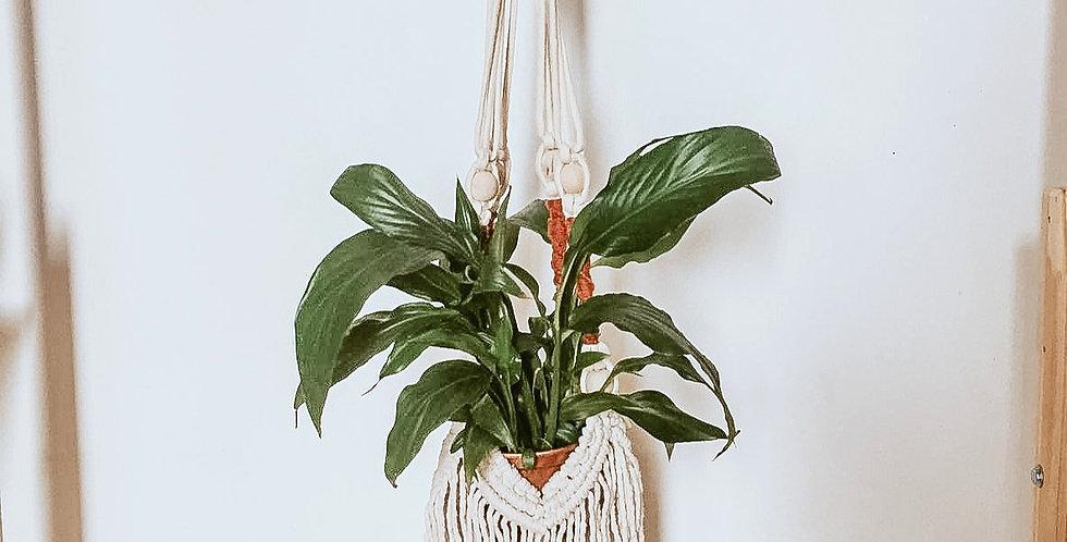 Plant Hanger Kiara