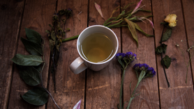 Top 5 Herbs for Lucid Dreaming